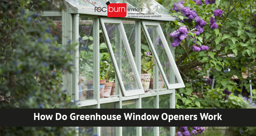How Do Greenhouse Window Openers Work